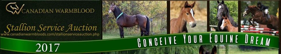 2016 stallion service auction ad final revision