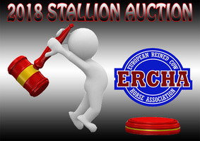Auction logo 2018