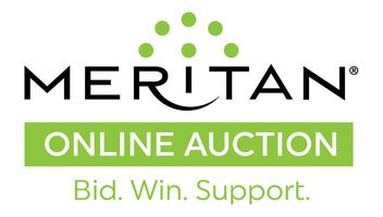 Meritan onlineauction logo f