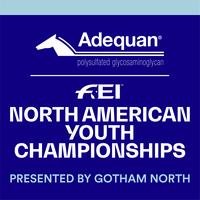 Nayc logo