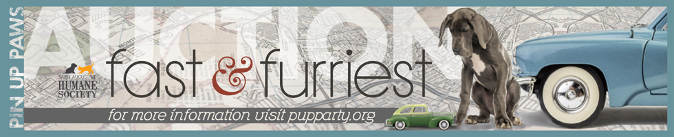 Pup auction banner2