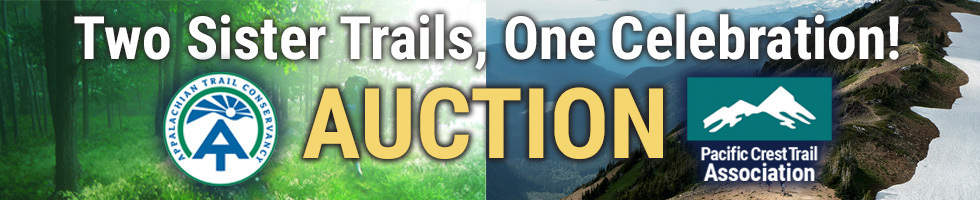 Auction banner v3
