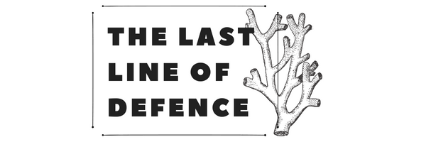 The last line of defence