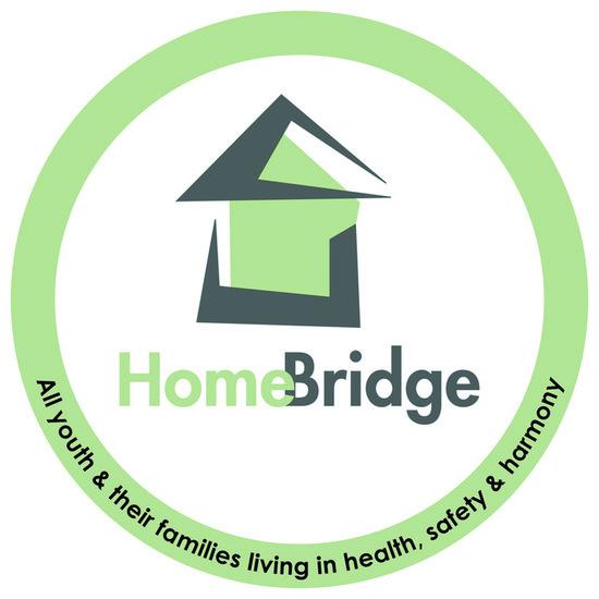Homebridge s550