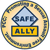 Ally shield s550