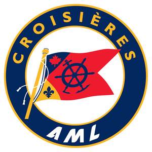 Logo aml 2009 process s300