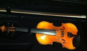Violin s300