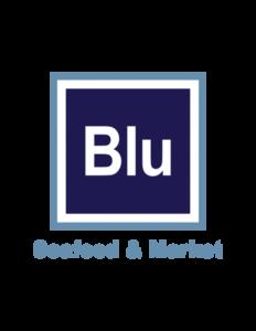Blu logo s300