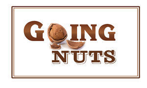 Going nuts logo 2 s300