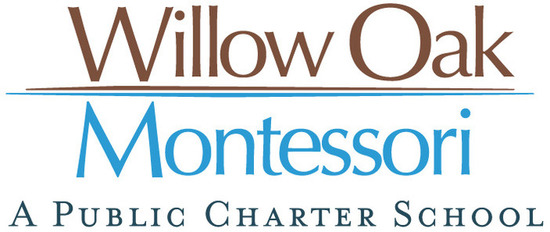 Logo wom public charter s550
