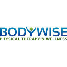 Bodywise s300