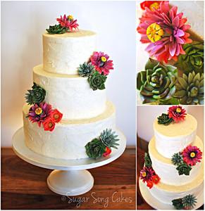 800x800 1421278284484 cactusflowersucculentweddingcakecollage s300