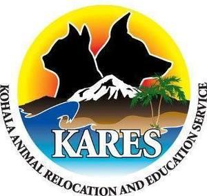 Kares logo s300