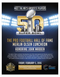 Pro football hall of fame s300