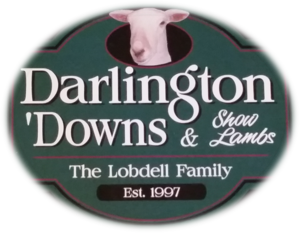 Darlington s300