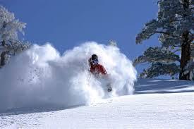 225 quechee ski s300