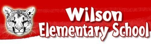 Wilson logo s550