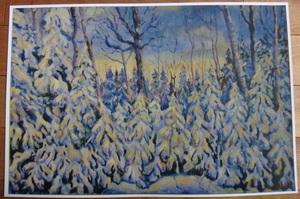 Snowonconifers s300