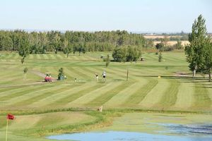 Bear creek golf s300