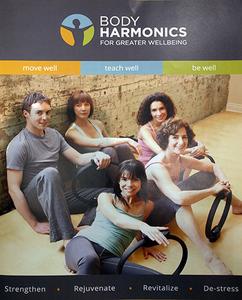 Bodyharmonics s300