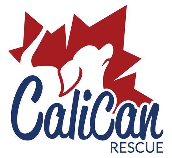2016 calican logo s550
