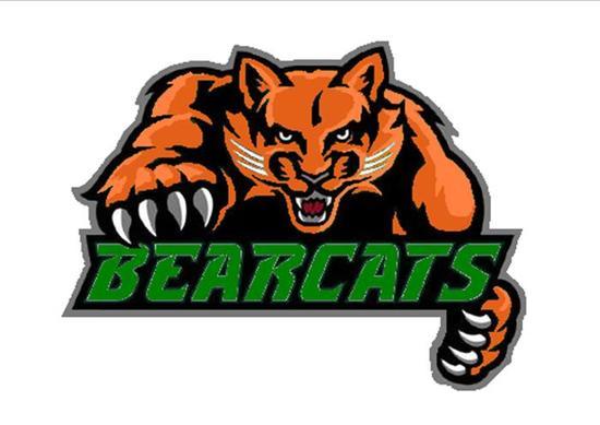 Whs bearcat logo s550