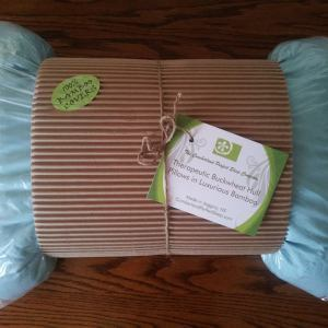 Pillow aqua with new tag s300