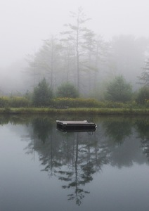 Hopson pond mist s300