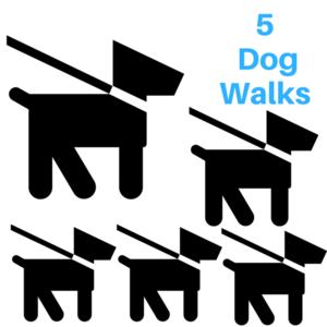 5 dog walks s300