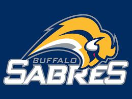 Buffalo s300