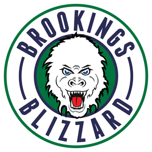 Logo   brookings blizzard s300