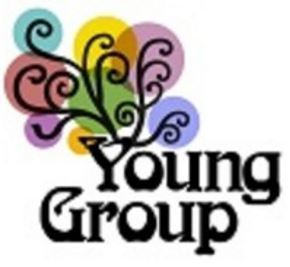 The young group s300