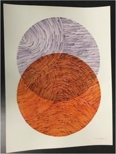 Seth johnson orange purple s300