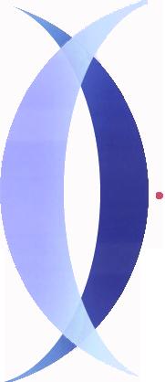Zcaf logo copy2 s550
