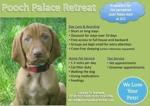 Pooch palace s300