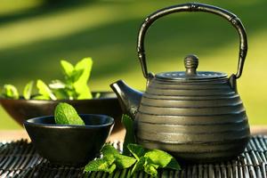 Green tea effective medicine against ovarian cancer 1 s300