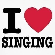 Sing s300
