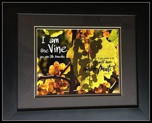 Photo vine s300