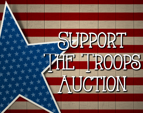 Support the troops 2017 s550