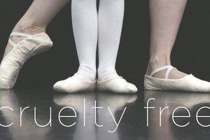 Ballet slippers s300
