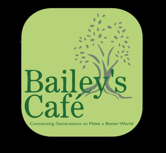 Baileys logo wslogan inside s550
