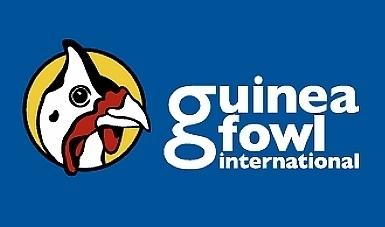 Gfia logo nogold3 s550