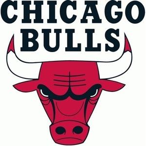 Chicago bulls 416x416 s300