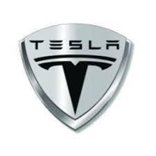 Tesla s300