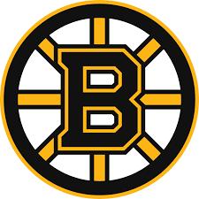 Bruins s300