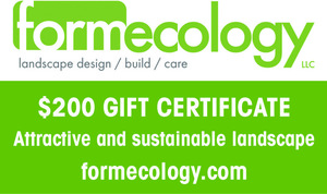 Formecology auction promo s300