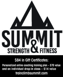 Sumit strength fitness auction online coacing   84 s300
