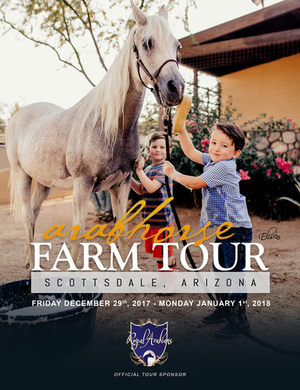 Arabhorse farm tour brochure cover chase and gio 2017 s550
