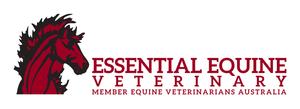 Eev new logo s300