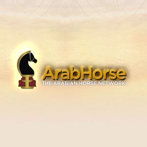 Arabhorse.com s300